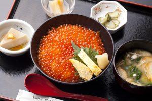 今週のイチ丼「山内鮮魚店 静江館」のキラキラいくら丼!