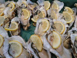 """【※速報】明日5月12日(日)ロイヤルフィッシュ店頭にて""""幻""""の『あまころ牡蠣』の無料試食会を開催!"""