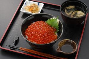 今週のイチ丼!「弁慶鮨」のキラキラいくら丼!