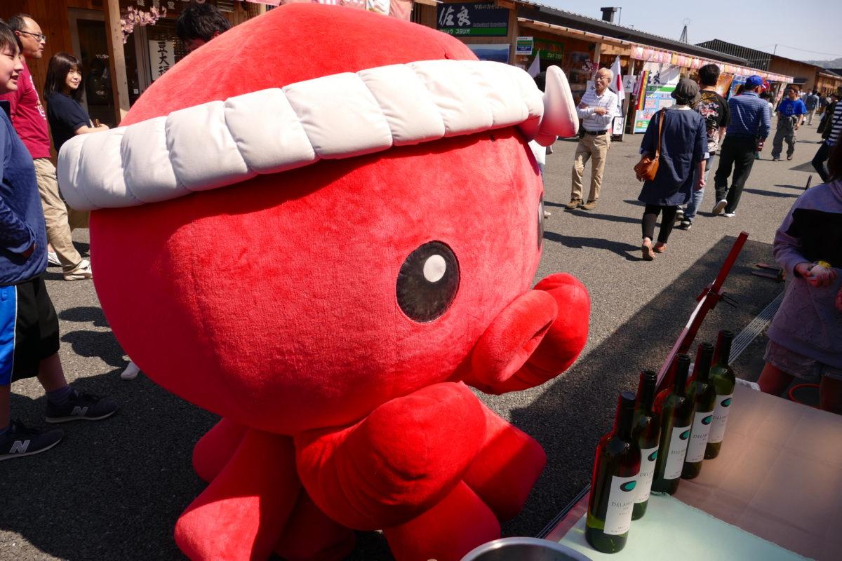【※緊急水揚げ】6月21日(日)『オクトパス君』が遊びにやって来ます!