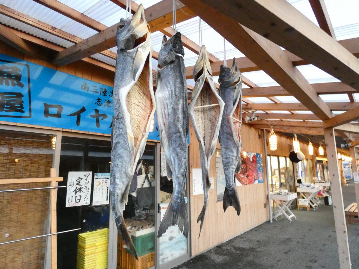 魚屋の営業について大事なお知らせ!5月13日(水)は魚屋が全てお休みです!