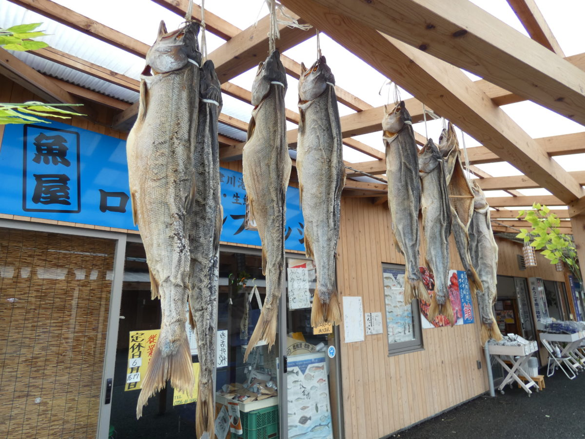 魚屋の営業について大事なお知らせ!7月29日(水)は魚屋が全てお休みです!