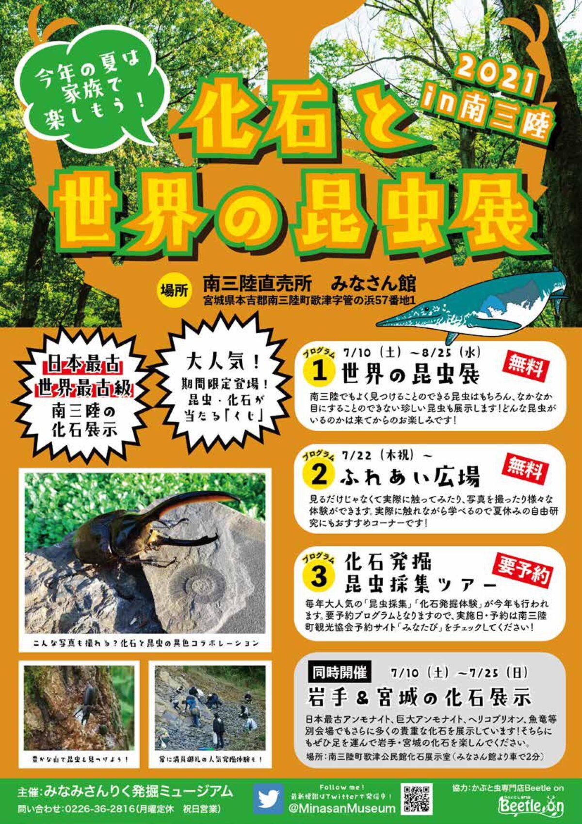 さんさん商店街から車で15分!夏休みに楽しめる『化石と世界の昆虫展』開催中!